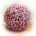 Ramo de novia de paniculata rosa