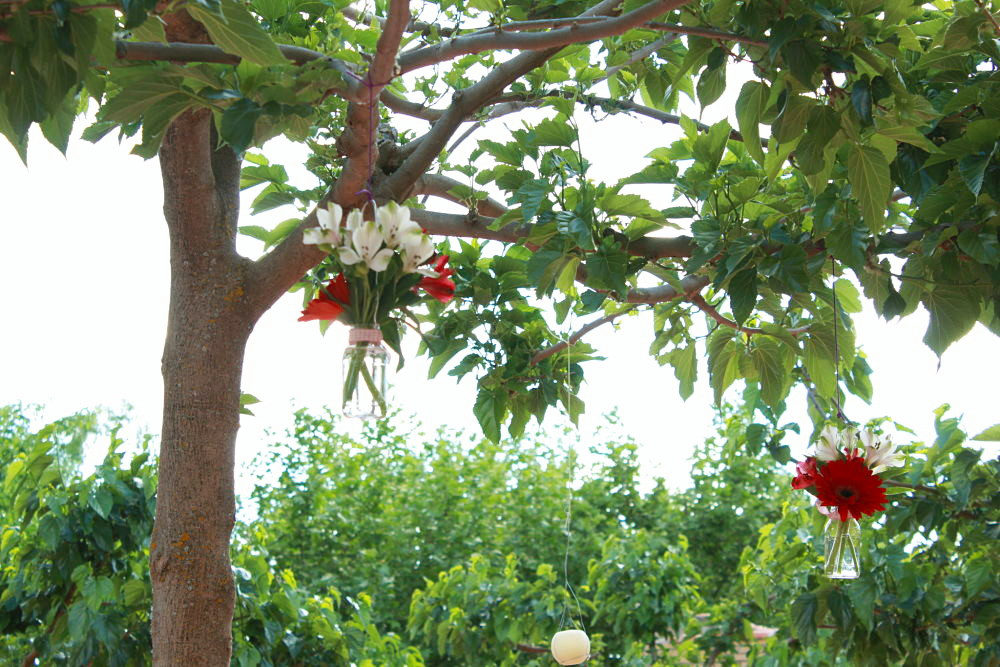 Boda árboles decorados