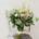 Ramo de eucalipto y astilbe blanco